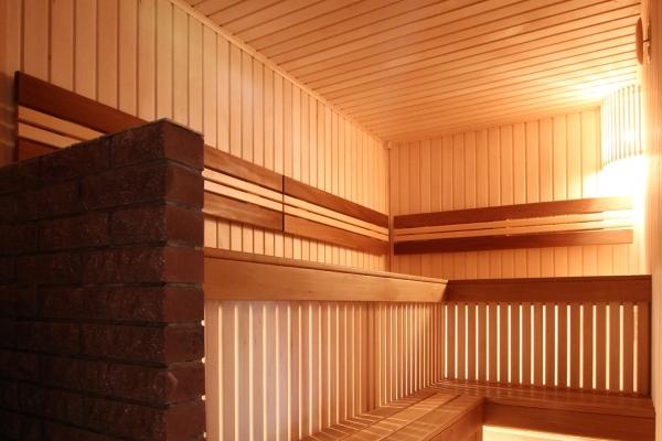 010-sauna-see-gull-141FE2300-A874-14EC-C9E4-6AE2097D9DCA.jpg