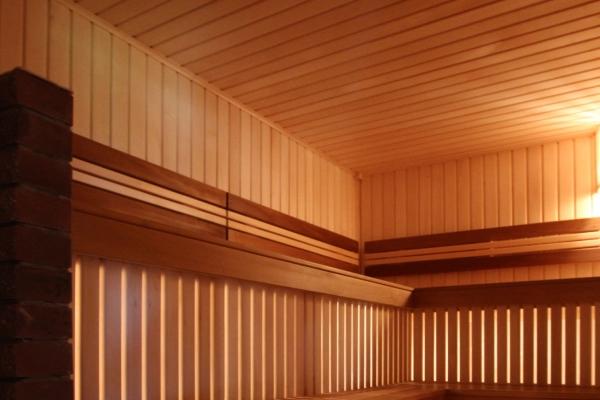 010-sauna-see-gull-5ECEACC55-01C5-009F-AD89-58FA929EDBC5.jpg