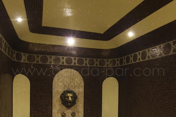 018-hammam-bronze-lion-902CB1D33-5944-DFE2-7755-F29107B58594.jpg