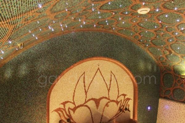 hammam-maharadja-gar-da-par-16E9C6526D-F773-15E9-9AC3-091CD91D7CE3.jpg